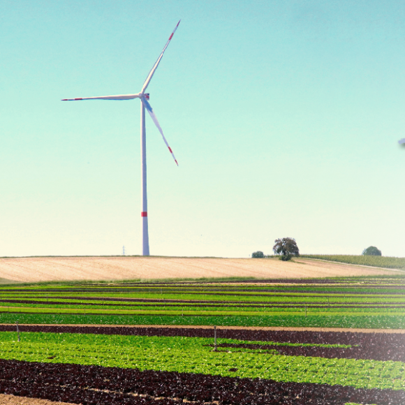 Länderspezial Wind in Berlin-Brandenburg, 17. Mai 2021, online